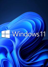 microsoft-windows-11-pro-oem-1pc-licencia-original
